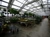 westveiw-in-other-greenhouse_16_1