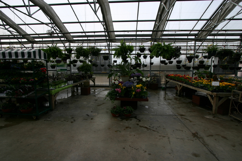 vingettes-in-other-greenhouse_12_1