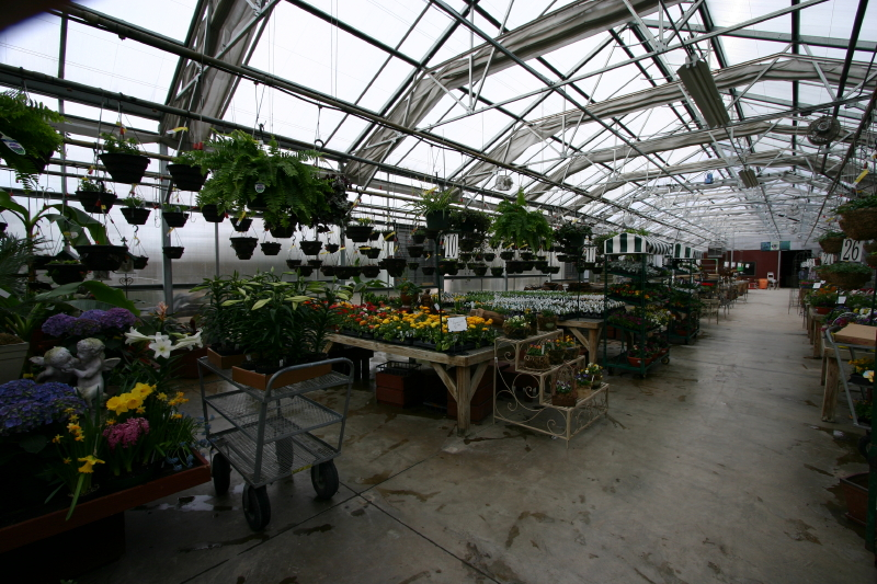 westveiw-in-other-greenhouse_16_1