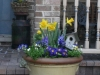 suzannes-porch-early-spring_1_1